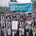 第14回埼玉県少女サッカーフェスティバル決勝大会(県大会) 準優勝!