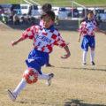 2020年度 埼玉県U-10 少女サッカー育成・交流大会(第26回大会)